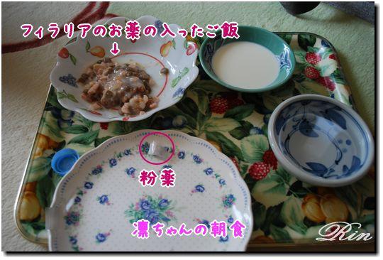 凛ちゃんの朝食