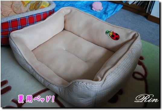 おニューの夏用ベッド