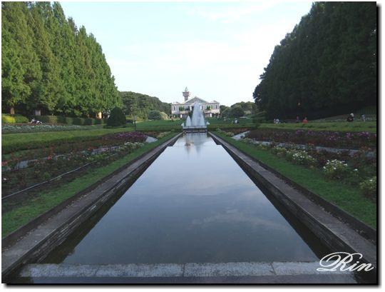 フランス庭園みた~い