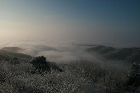太平山の冬景色