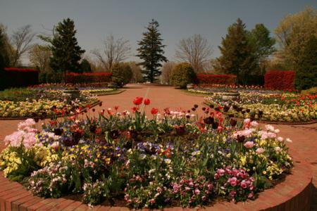 とちぎわんぱく公園の春