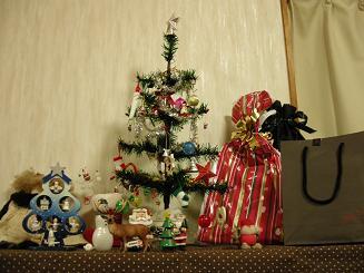 2009.12.8オアシスパークイルミ (1)
