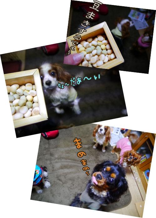 0203b_20120204011228.jpg