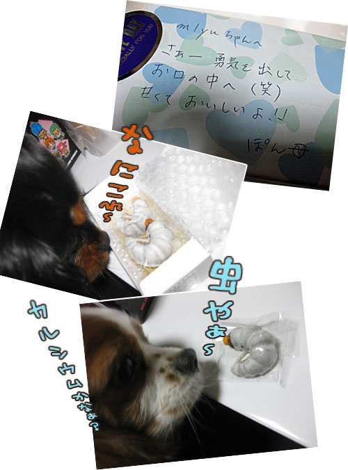 0314c_20120314235513.jpg