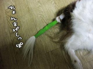 0702b_20110703015517.jpg