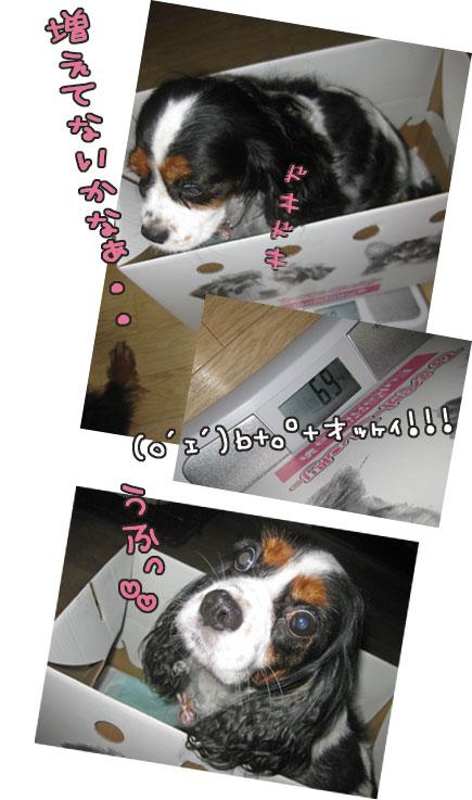 0930a_20111001012330.jpg