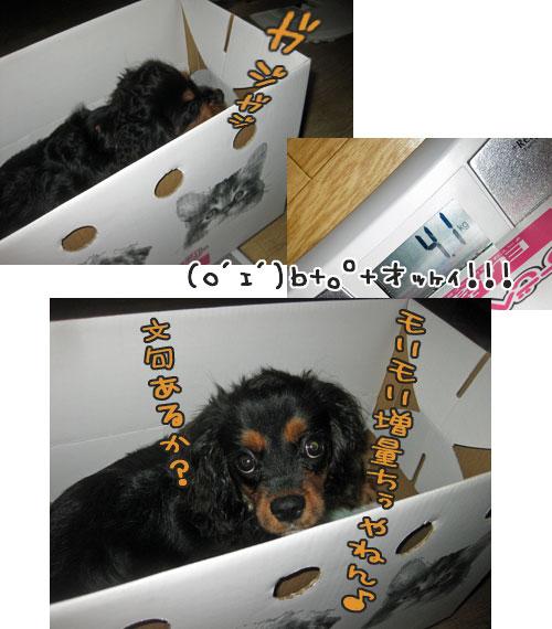 0930b_20111001012330.jpg