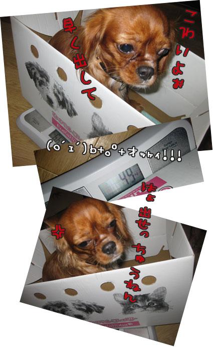 0930d_20111001012330.jpg