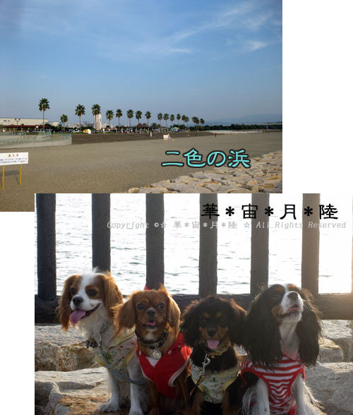1009a_20111010201905.jpg