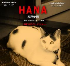 HANA 約束の猫