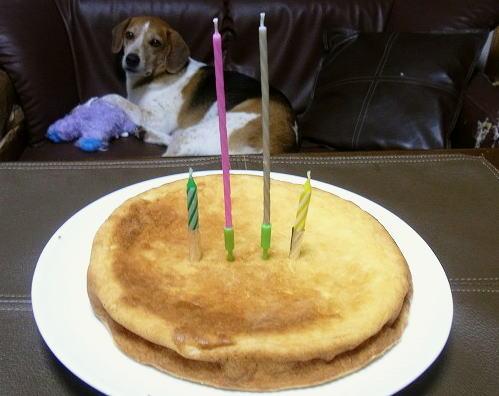 14チーズケーキ