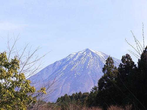 1元旦の富士山