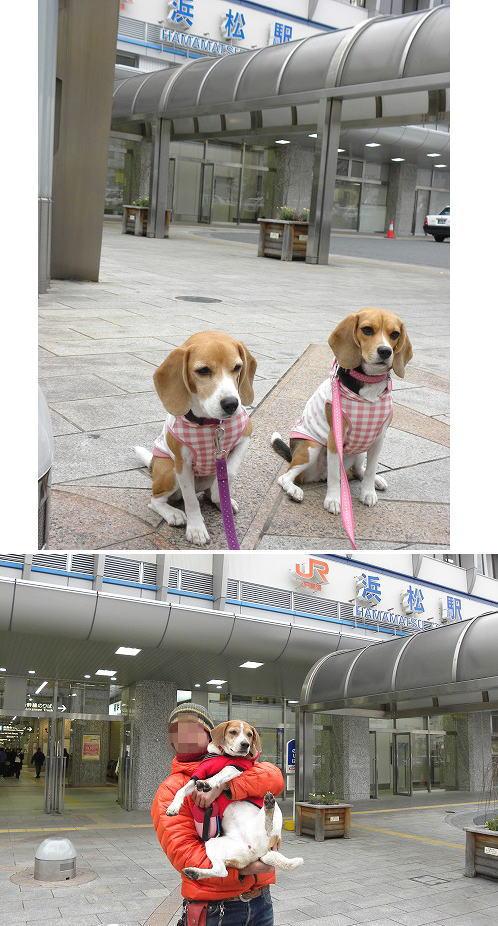 20浜松駅にて