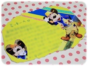 トレイル用BDカード
