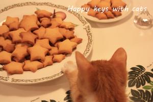 チロクッキー