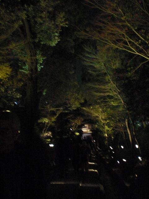 高台寺からねねの道への下り道
