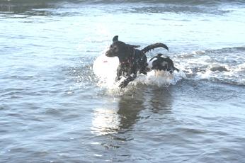 200608海3