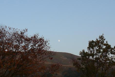 月が輝き始めて♪