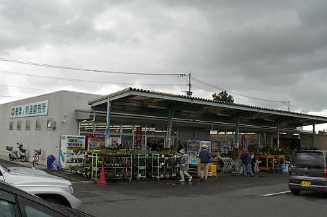 豊津の直売所