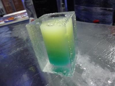 ICE BAR TOKYO (8)