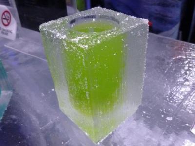 ICE BAR TOKYO (9)