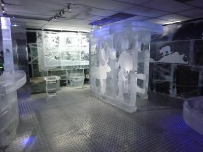 ICE BAR TOKYO (28)