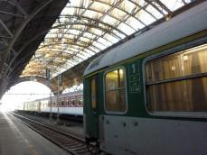 P1420066.jpg