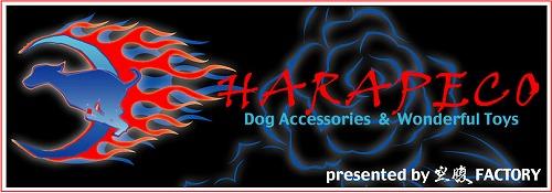 harapeco500_20101216133958.jpg