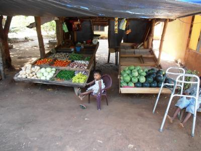 2011年8月タイ-スリランカ旅行スリランカ前半10日シーギリヤ沿道八百屋
