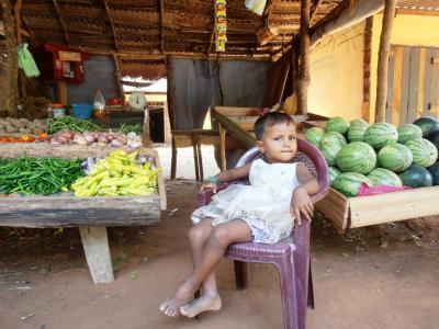 2011年8月タイ-スリランカ旅行スリランカ前半10日シーギリヤ沿道八百屋娘