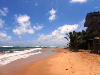 2011年8月タイ-スリランカ旅行スリランカ後半11日ヒッカドゥワ砂浜