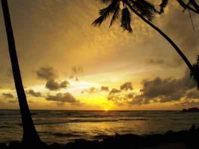 2011年8月タイ-スリランカ旅行スリランカ後半11日ベントタ付近にて夕焼け