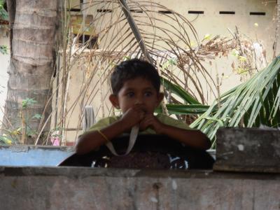 2011年8月タイ-スリランカ旅行スリランカ後半14日ヤーパフワ近く食堂の子供