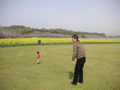 snap_harekumoday_201033104121.jpg