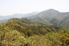 釈迦ヶ岳からみた黒岳