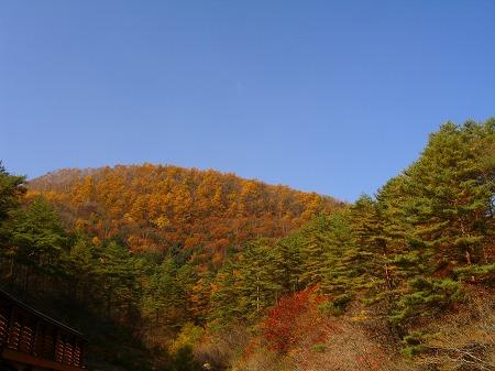 紅葉の景色♪