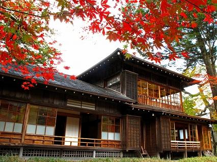 2009.11日光田母沢 681