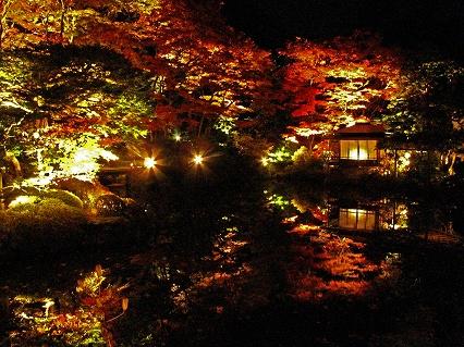 2009.11日光逍遥園紅葉ライトアップ 897