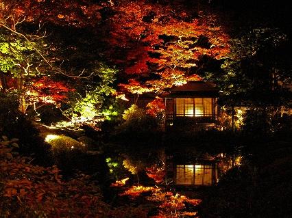 2009.11日光逍遥園紅葉ライトアップ894