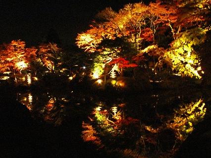 2009.11日光逍遥園紅葉ライトアップ 841