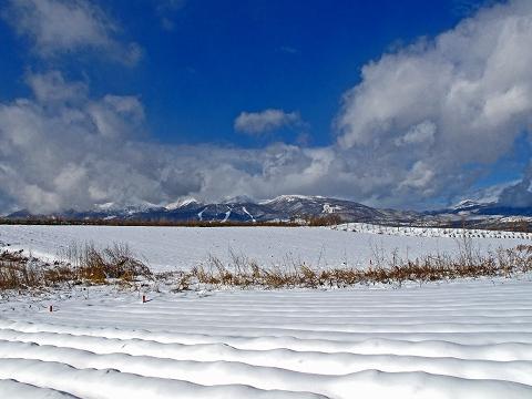 2009.12.那須雪景色 (2)