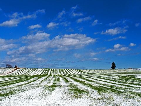 2009.12.那須雪景色 (3)