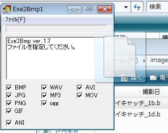 msh2_02a.jpg