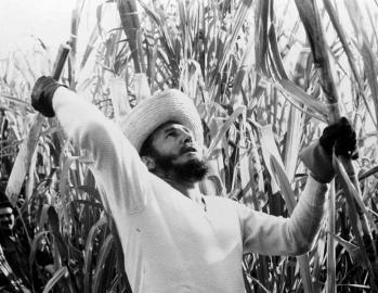 10-Fidel en zafra de caña de azúcar, en febrero de 1961