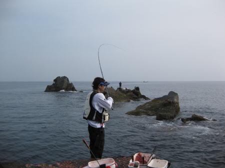 2010-5-4白瀬3