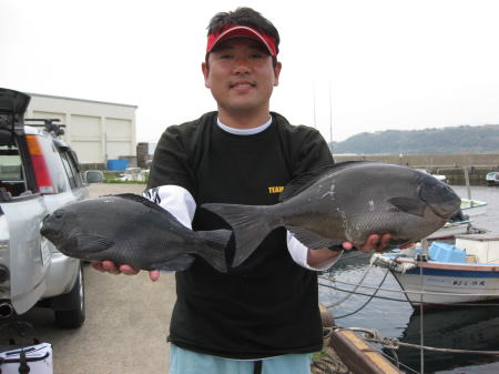 2010-5-4白瀬2
