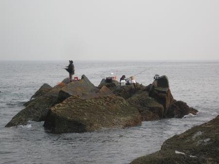 2010-5-4白瀬1