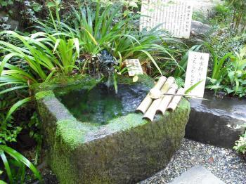 武田神社.4