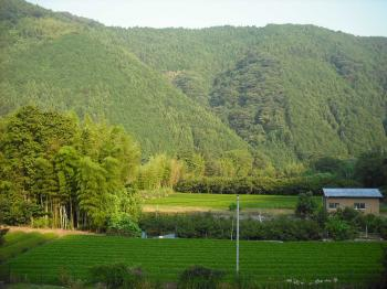 宿の近くの山