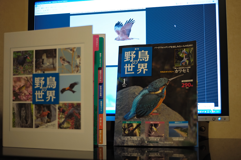 野鳥の世界